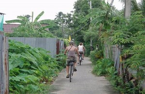 Je fietst in Bangkok o.a. door achteraf straatjes en rustige groene oases.