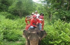 Vanuit de Elephant Village kun je een ontspannende trektocht maken.