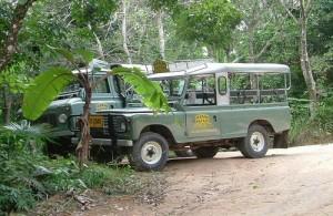 De leukste en beste manier om het binnenland van Phuket te ontdekken is per jeepsafari.