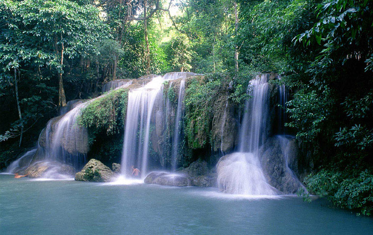 Informatie over de natuur in Thailand