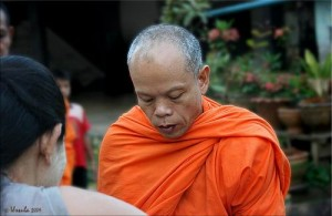 Na een donatie aan de monniken van Wat Bor Fai kun je er de vissen voeren.