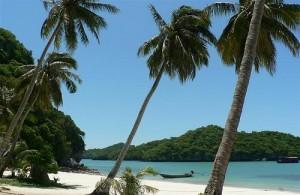 Koh Samui: witte stranden, kokosbomen en kristalhelder water.