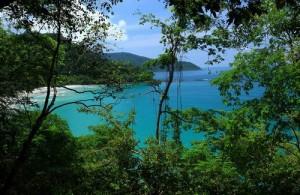Het bergachtige Koh Kood is grotendeels bedekt met groene weelderige jungle en kokosnotenbomen.